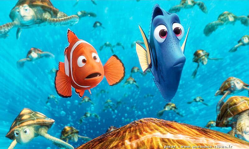 Le Monde de Nemo 2, film Pixar 2016